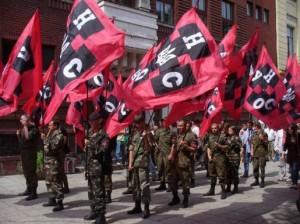 Украинские правые радикалы и парламентские выборы
