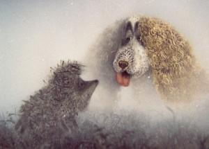«Ежик в тумане»