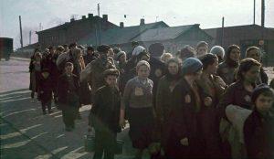 Колонна узников Минского гетто. 1941 г.