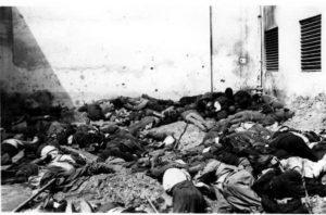 """Трупы евреев во дворе тюрьмы Бригидки. На обороте фото есть надпись """"Bluthof Lemberg"""", т.е. """"Кровавый двор Львов"""""""