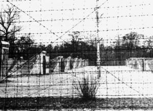 Сырецкий лагерь