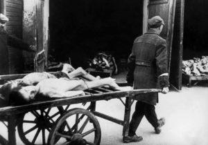 На улицах Варшавского гетто ежедневно от голода умирало больше десяти человек. Каждое утро похоронные повозки собирали погибших и вывозили их для дальнейшего кремирования