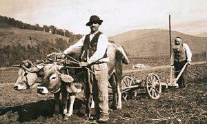 Еврейская земледельческая колония