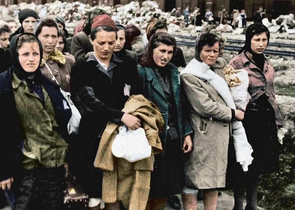 Семью Лили, которая жила в небольшом городке Билке в Венгрии, нацисты сначала отправили в гетто в Карпатах, а в мае 1944 года посадили на поезд до Аушвица. Родителей Лили и ее пятерых братьев сразу же отправили в газовые камеры. Девушку же отобрали для работы в трудовом лагере Миттельбау-Дора (подразделение Бухенвальда) в Германии, где заключенные помогали изготавливать ракеты «Фау-2».